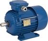 Универсальный трехфазный индукторный синхронный электродвигатель Вesel RSh 80-4A исполнение IMB3 [50 Hz]
