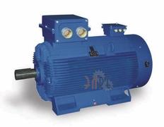 электродвигатель высокой производительности Celma 2SIE 315мм