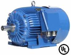 двигатель общего назначения Celma 2Sg 250мм