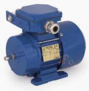 Универсальный однофазный электродвигатель Cantoni (Вesel) SEg 56-2A