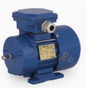 Универсальный трехфазный электродвигатель Cantoni (Вesel) Sg 56-2A