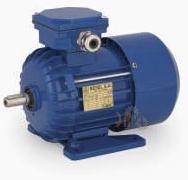 Универсальный трехфазный электродвигатель Cantoni (Вesel) Sh 71-2A