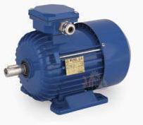Универсальный трехфазный электродвигатель Cantoni (Вesel) Sh 80-2A