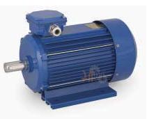 Универсальный трехфазный электродвигатель Cantoni 63 мм размер