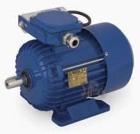 Универсальный однофазный электродвигатель Cantoni (Вesel) SEh 90-2L