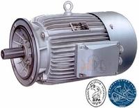 Двигатель морского исполнения Celma 160мм купить