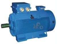 электродвигатель IP54/55 с высоким КПД Emit 2SIE 355H2D