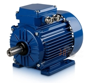 взрывозащищенный электродвигатель Indukta II2DExtD Sg 180